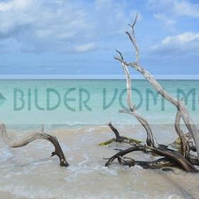 Fotoausstellung Bilder vom Meer aus der Karibik | Stimmungsvolle Strandbilder aus Kuba