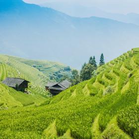 terrace hills