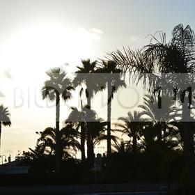 Bilder Sonne vom Meer | Sonnenaufgang am Meer