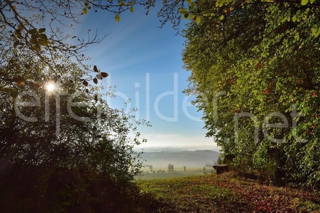 Landschaft bei Strohn | Morgenstimmung, fotografiert bei Strohn in der Eifel /Vulkaneifel)