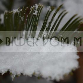 Schnee am Mittelmeer | erstmals seit hundert Jahren in Torrevieja