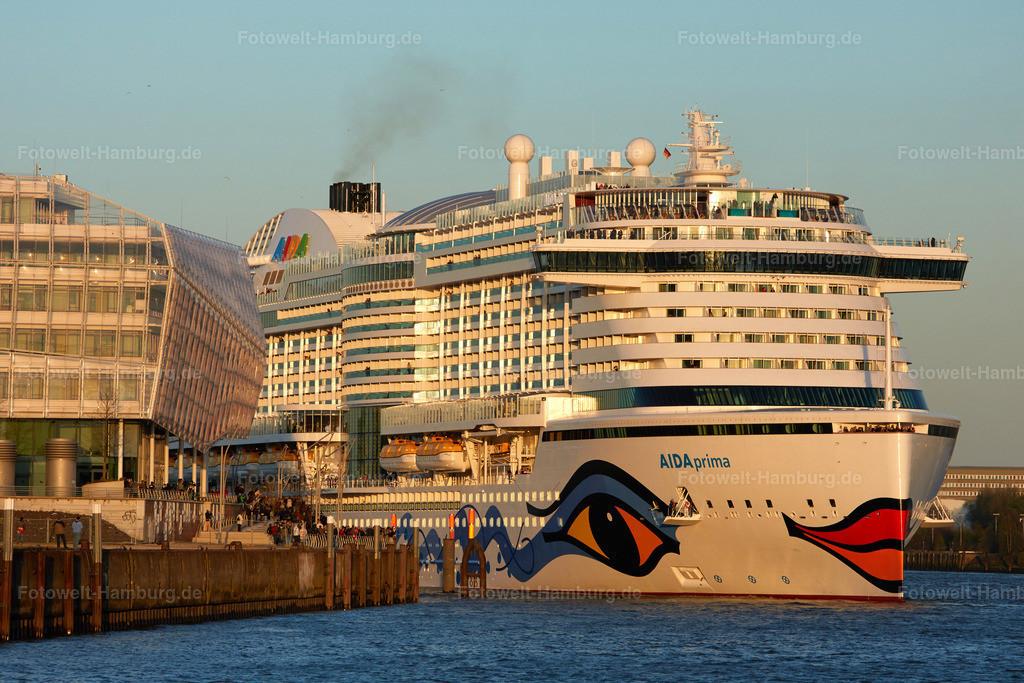 11919868 - Aida Prima in der Hafencity