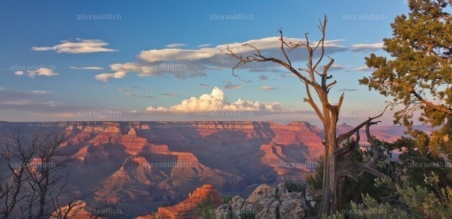 Grand Canyon in Abendstimmung