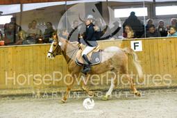 RFV Avenwedde - Prüfung 04-8140