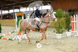 RFV Avenwedde - Prüfung 04-8132