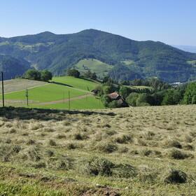 Zeller Bergland 1