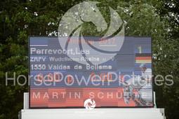 RFV Ochtrup - Prüfung 13.2-5960