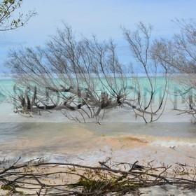 Fotoausstellung Bilder vom Meer | Unberührter Kuba Strand