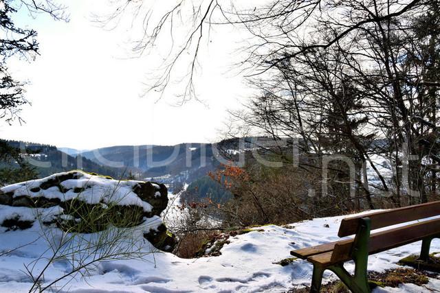 Tellerlay - Blick ins Liesertal | Aussichtspunkt Tellerlay, Daun Üdersdorf in der Vulkaneifel
