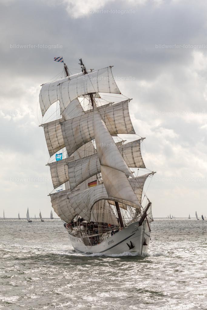 Artemis hart am Wind, Sailing-Cup 2019