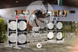 RFV Avenwedde - Prüfung 12-4102