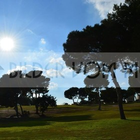 Bilder Golf  | Golfbilder Golfplatz Villamartin Spanien