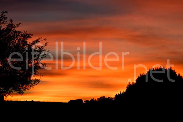 Sonnenuntergang in der Vulkaneifel | Abendrot über Daun Weiersbach in der Eifel