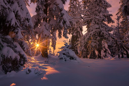 Winter-Sonnenuntergang 1