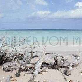 Fotoausstellung Bilder vom Meer | unberührter Strand in Kuba