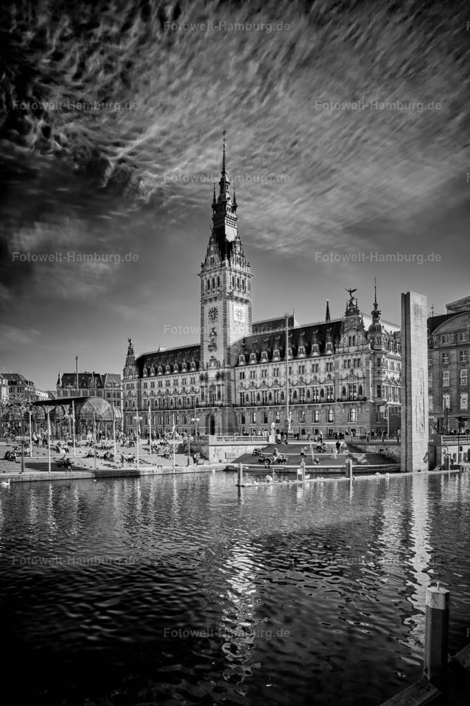 12001239 - Hamburger Rathaus