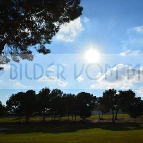 Bilder Golf | Warme Tage im Januar in Villamartin Spanien