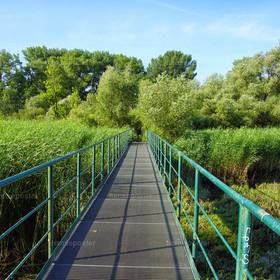 Brücke ins Heuckenlock