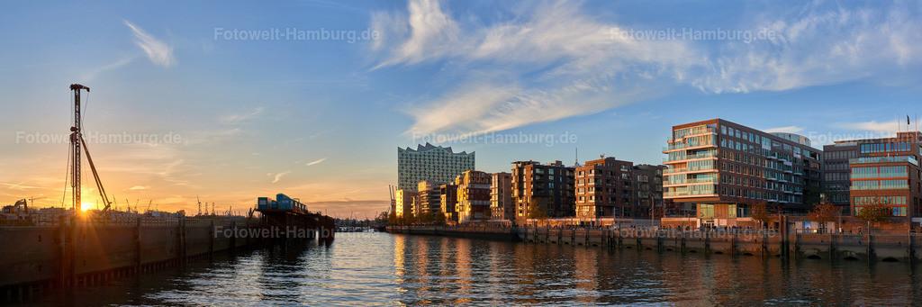 12024338 - Grasbrookhafen Panorama
