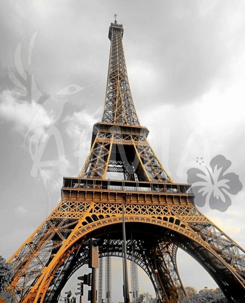 Bild des Monats März 2019 | Der Eiffelturm in Paris