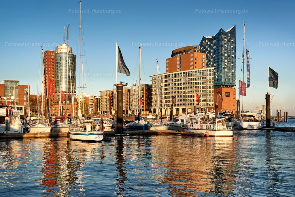 10190424 - City Sporthafen | Blick über den City Sporthafen auf die Elbphilharmonie.