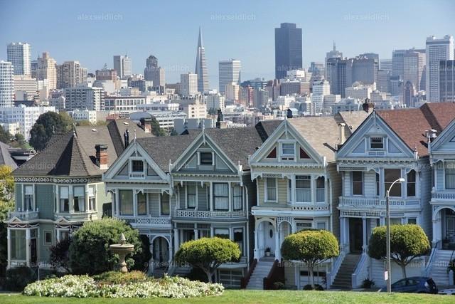 Painted Ladies San Franscisco