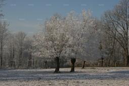 winter 111
