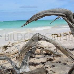 Fotoausstellung malerische Bilder vom Meer | Unberührbarer Strand bei Cayo Jutías Kuba