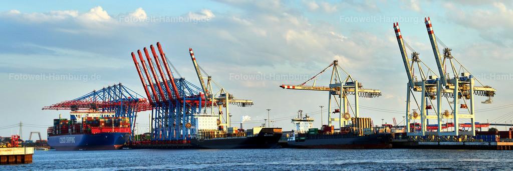 12001148 - Panorama am Containerterminal Tollerort