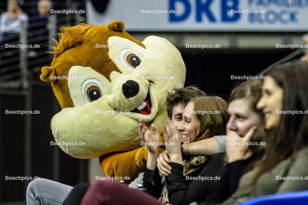 2016_051_BLM_BRVolleys-Netzhoppers | BSR-Maskottchen Eichhörnchen