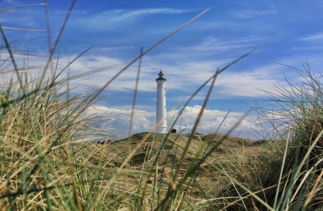 Leuchtturm Nr Lyngvig Dänemark im Strandhafer