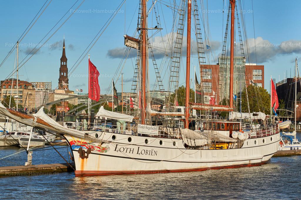 12002647 - Loth Lorien