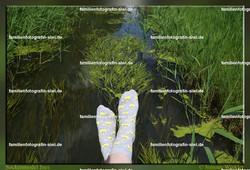 01 2016 06 14 IMG_0861 - Entchen am Wasser - Sockenmodel Ines.JPG