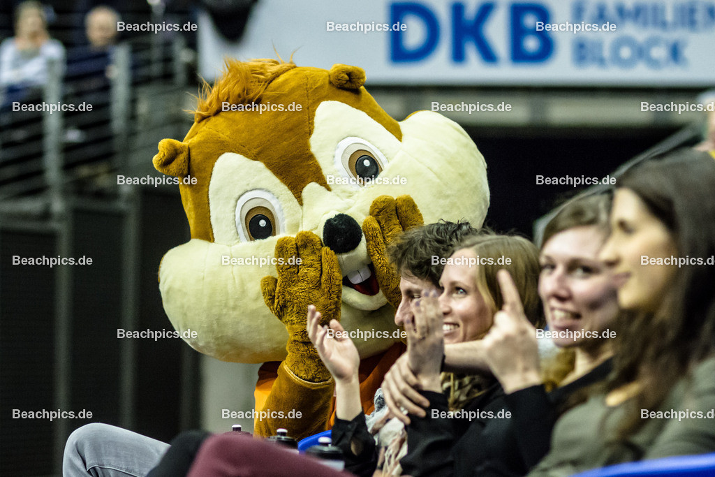 2016_052_BLM_BRVolleys-Netzhoppers   BSR-Maskottchen Eichhörnchen