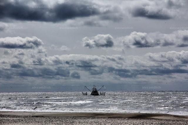 Krabbenfischer auf der Nordsee
