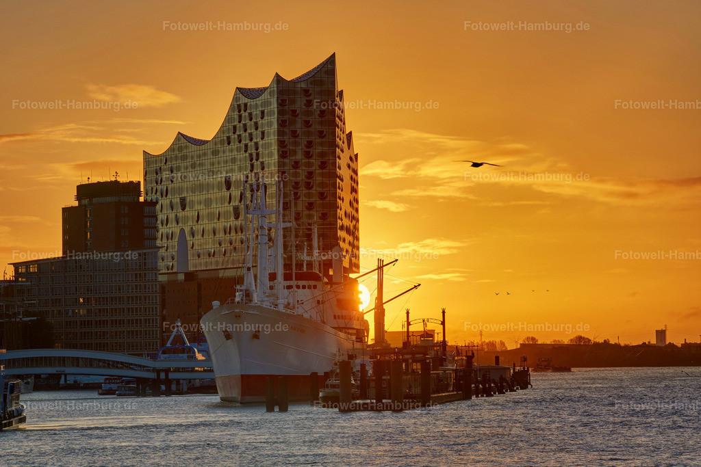 11956856 - Elbphilharmonie und Hafencity Panorama | Tolle Morgenstimmung an der Elbphilharmonie