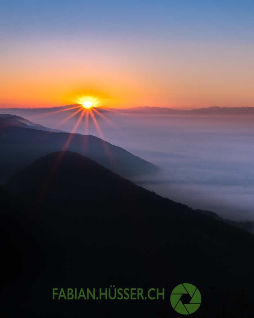 Sonnenaufgang über dem Nebelmeer | Sonnenaufgang auf der Wasserflue bei Aarau, Schweiz