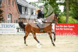 RFV Ochtrup - Prüfung 13.2-5980