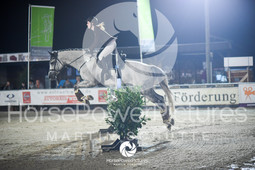Vinnumer Reitertage 2017 - Prüdung 36.2-5190