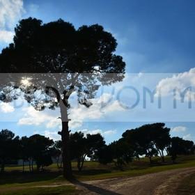 Golf Bilder | Bilder Golfplatz Villamartin Spanien