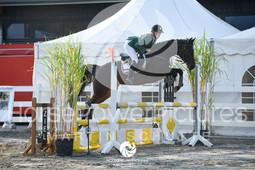 Massener Heide - Prüfung 31-4600