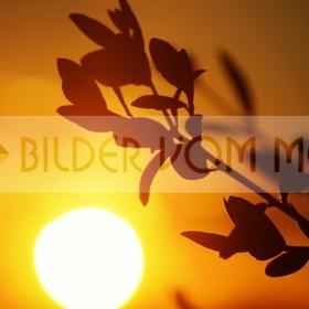 Bilder vom Meer als Wandbild Meer mit Sonnenuntergang | Sonne versinkt in El Galan, Spanien
