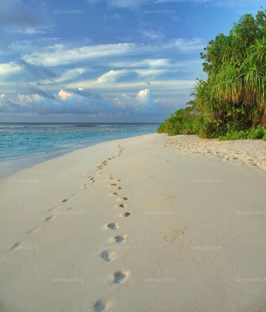 Strandspuren im Paradies