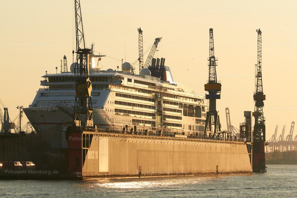 11560066 - MS Europa 2 im Dock 10 | Die MS Europa 2 bei Blohm und Voss im Dock