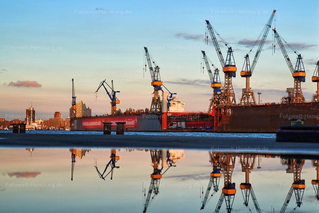 12006823 - Hamburger Hafen gespiegelt   Blick auf die Docks mit Wasserspiegelung am Fähranleger Altona