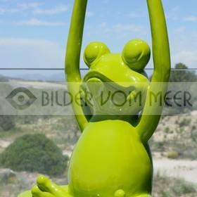 Strand Deko  | Jogy Froggy: hier lässt sichs leben!