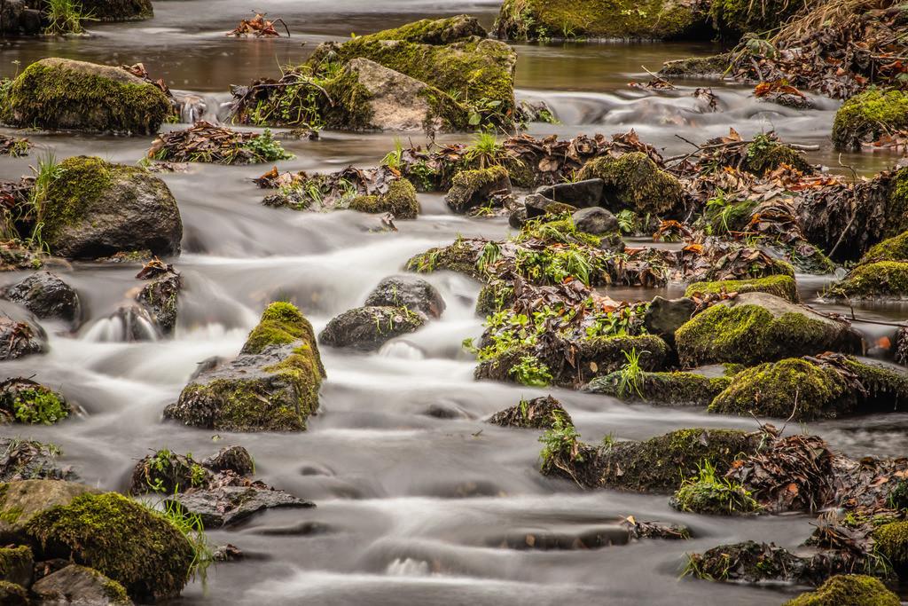 Der Fluss der Dinge