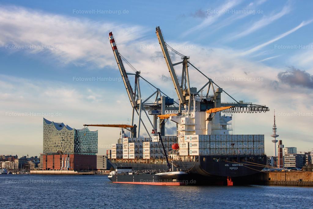 11951592 - Hamburger Hafen und Elbphilharmonie