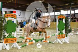 RFV Avenwedde - Prüfung 04-8129