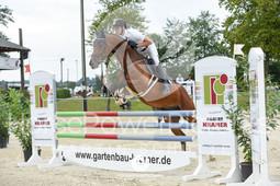 Vinnumer Reitertage 2017 - Prüfung 29.2-1156